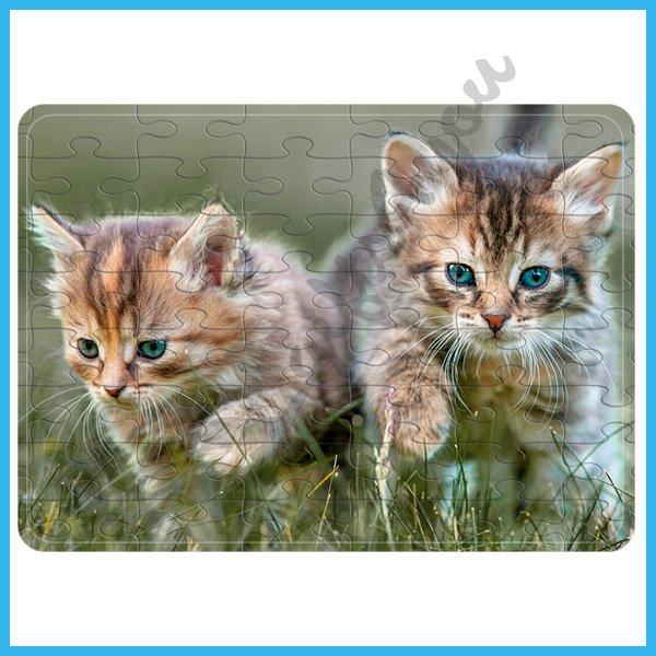 puzzle-Kitten puzzle_11