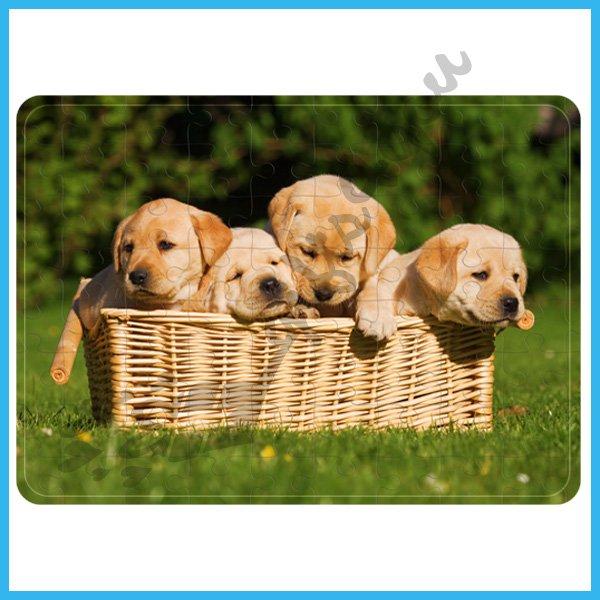 puzzle-Puppies puzzle_3